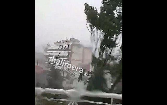 Η κακοκαιρία ξαναχτύπησε την Αρκαδία - Δέντρο ξεριζώθηκε και έπεσε την Τρίπολη (βίντεο)