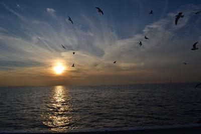 Al-Qur'an Tentang Dasar Lautan Yang Gelap