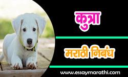 dog-essay-in-marathi