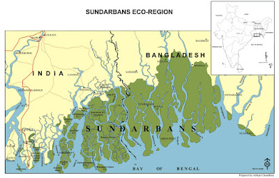 Sundarban Jungle Map
