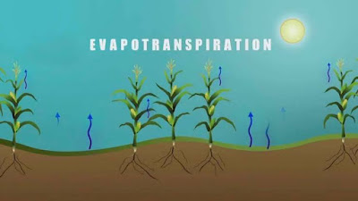 Evapotranspiration ppt download free