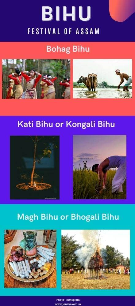 Bihu Infographic Photo Image | Bihu Festival Of Assam