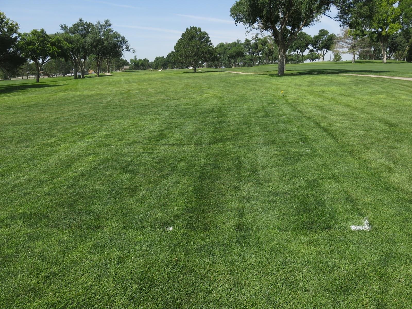 Texas Tech Turfgrass Science