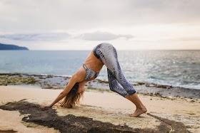 विन्यास योग Vinyasa Yoga