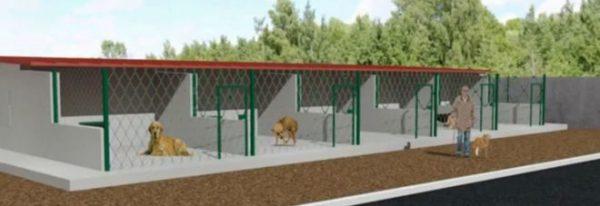 Ο Δήμος Ν. Προποντίδας στους   107 Δήμους που παίρνουν χρηματοδότηση για τα αδέσποτα ζώα