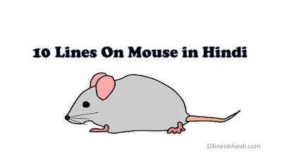10 Lines On Mouse in Hindi