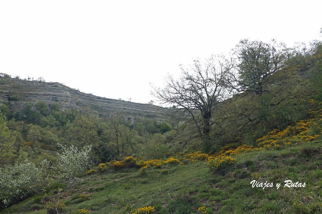 Paisaje del Esàcio natural de Covalagua
