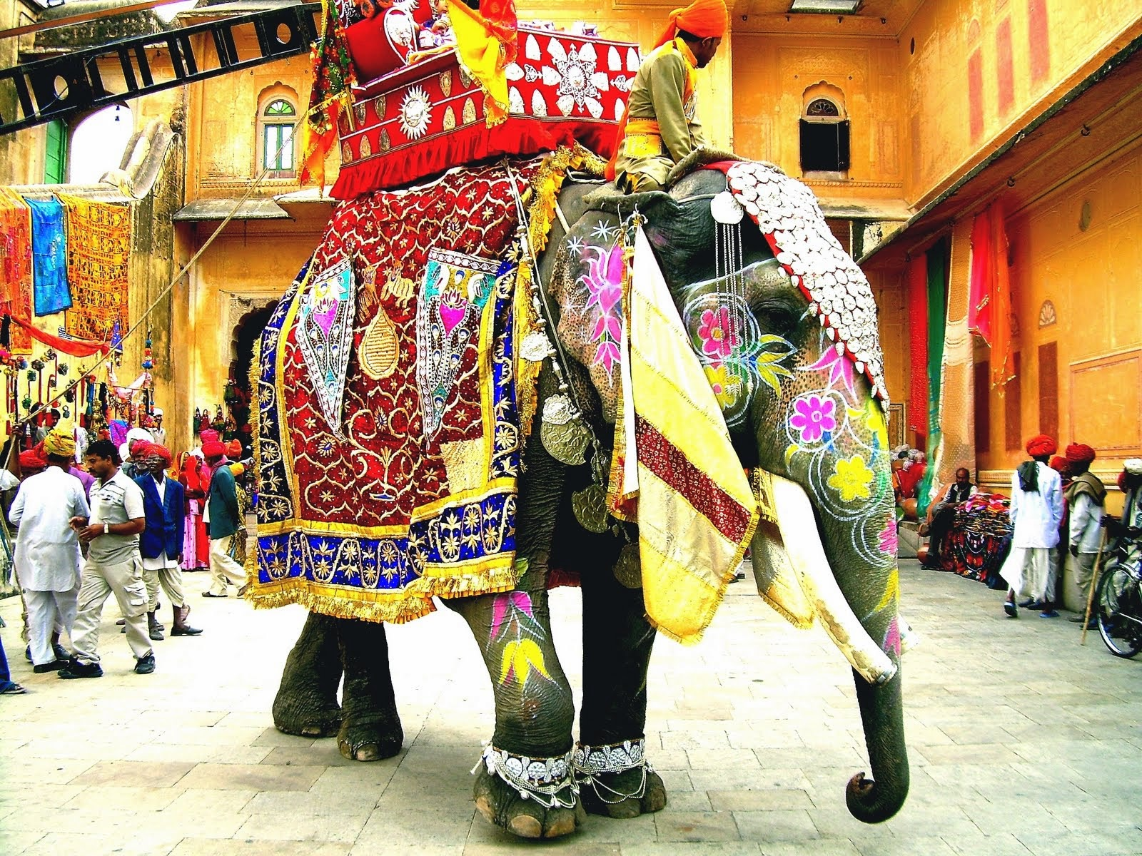 A Regally Adorned Elephant in Rajasthan