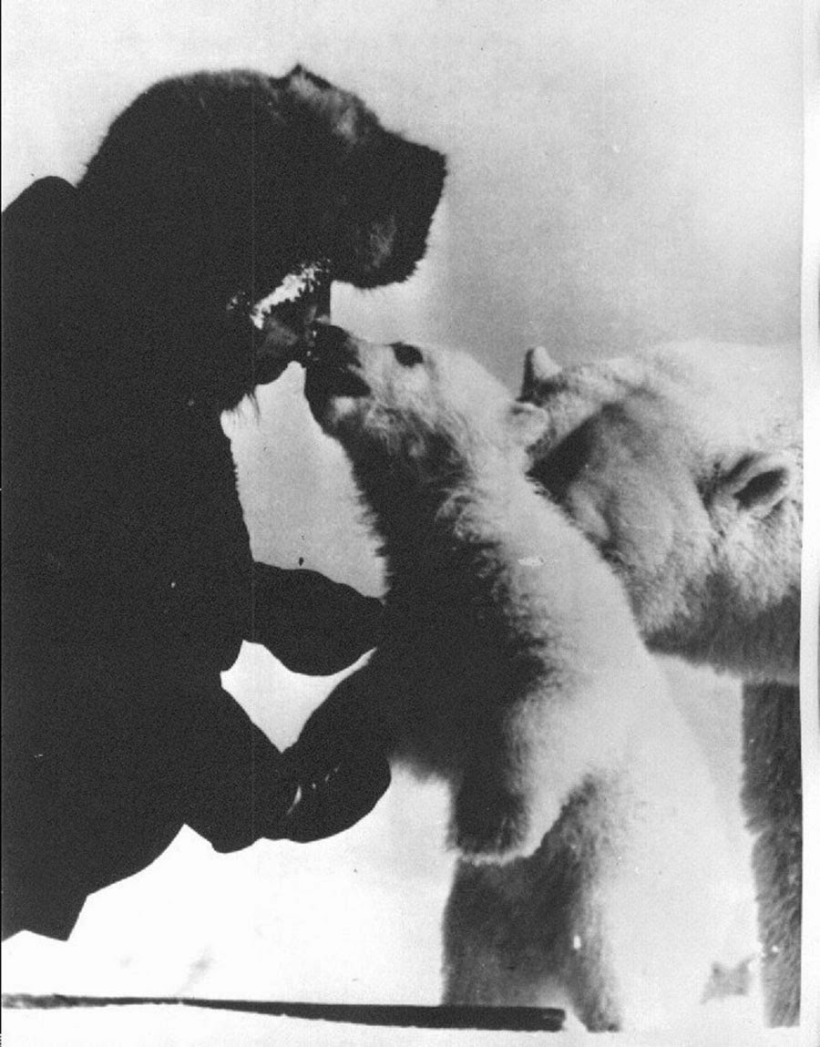 Giving a kiss to the bear cub.