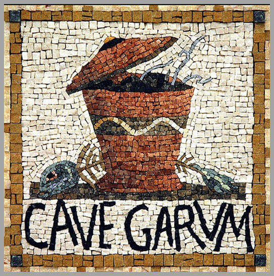 Garum romes funky fish sauce s t r a v a g a n z a made from fish guts garum was the condiment of choice across the roman world a network of factories and trade routes sprang up to feed romes insatiable fandeluxe