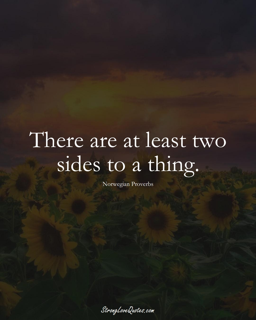 There are at least two sides to a thing. (Norwegian Sayings);  #EuropeanSayings
