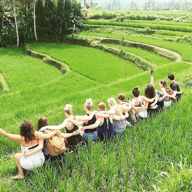 Amazing Ubud, Bali,Time In Ubud Bali Will Be A Beautiful Things