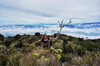 aceh tenggara, gunung leuser, 3315 mdpl, puncak gunung, pendakian gunung, aceh , gayo lues