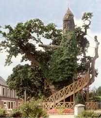Pohon+Chapel+Oak+Perancis - 10 Pohon Terunik di Dunia