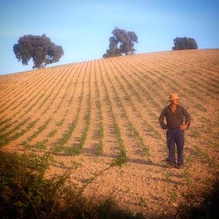 Observando un llano polvoriento y deforestado  donde un tractor arroja agroquímicos pregunto:  ¿Quiénes son los locos?¿Los humanos o las  cabras?La agricultura de los monocultivos,  basada en transgénicos y agroquímicos es una  causa importante de la destrucción del planeta.