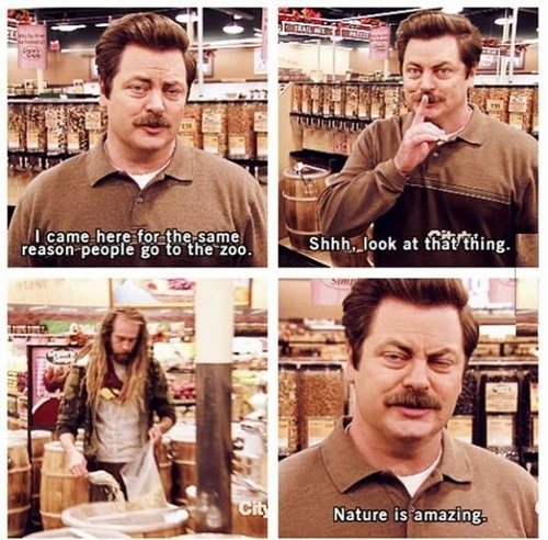 Parks And Rec Whole Foods