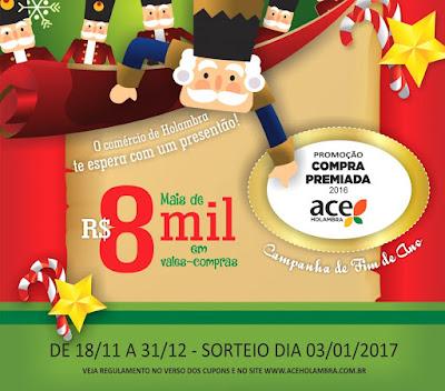 Promoção ACE Comércio Holambra Compra Premiada 2016 2017