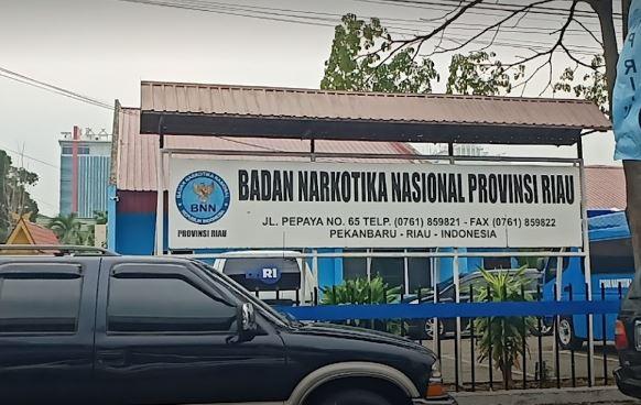 Alamat Lengkap dan Nomor Telepon BNN Kabupaten/Kota se-Riau