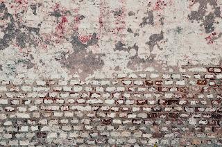 brzydka ściana w ogrodzie