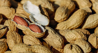 فوائد الفول السوداني الصحية ستحبون تناوله باستمرار!