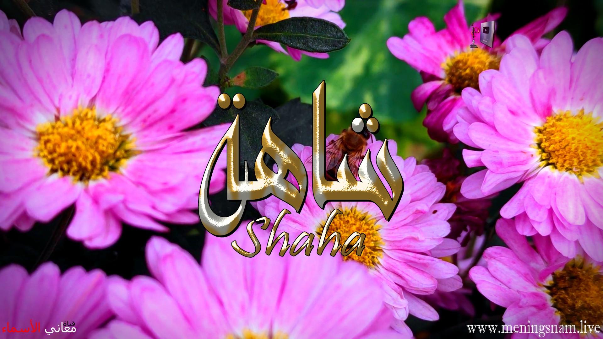 معنى اسم شاهة وصفات حاملة هذا الاسم Shaha