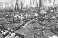 Paisaje calcinado tras el incendio de 1979