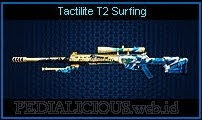 Tactilite T2 Surfing