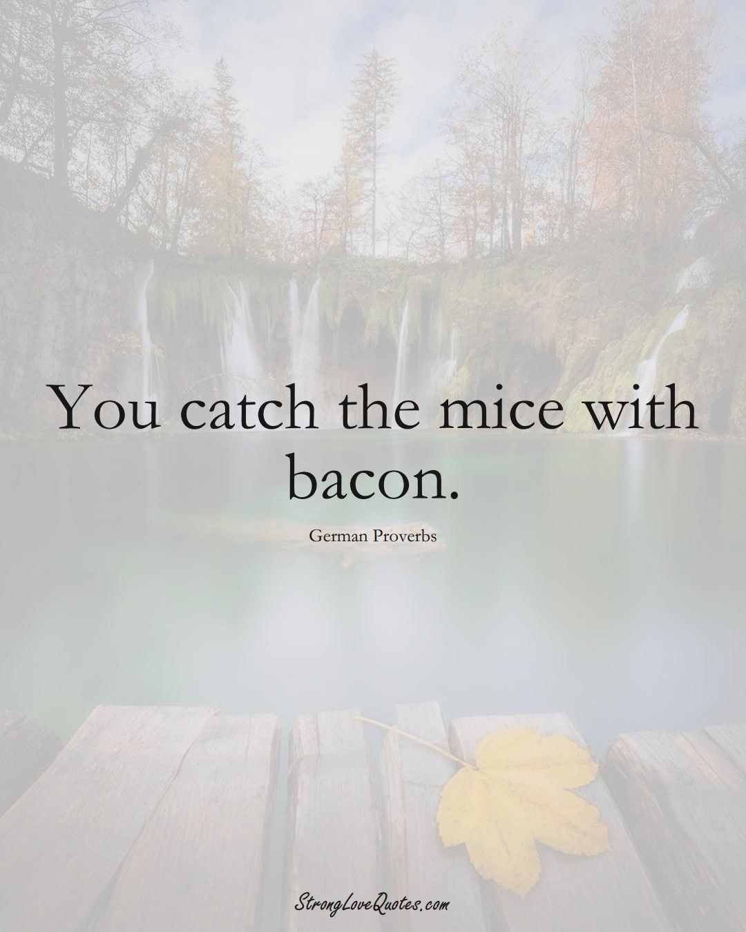 You catch the mice with bacon. (German Sayings);  #EuropeanSayings