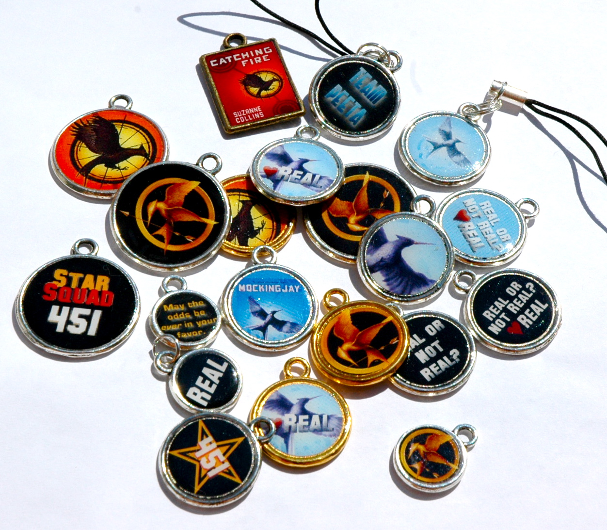Hunger Games Lessons: DIY: Create Your Own Hunger Games