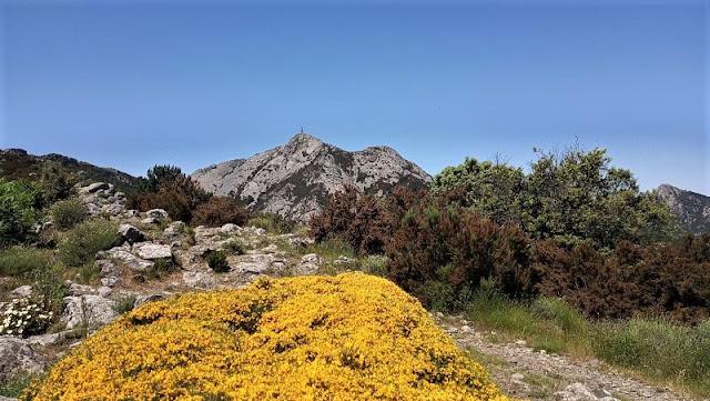 sentiero lungo sentiero delle farfalle con vista sul monte capanne