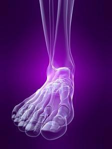 foot_pie_05100457