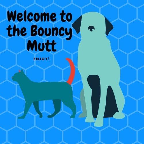 The Bouncy Mutt: Craigslist Warning  Yakima Dog Flipper