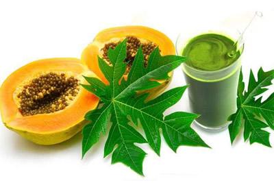 Papaya Leaves Juice