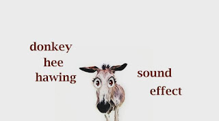how donkey sounds