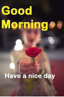 photo good morning