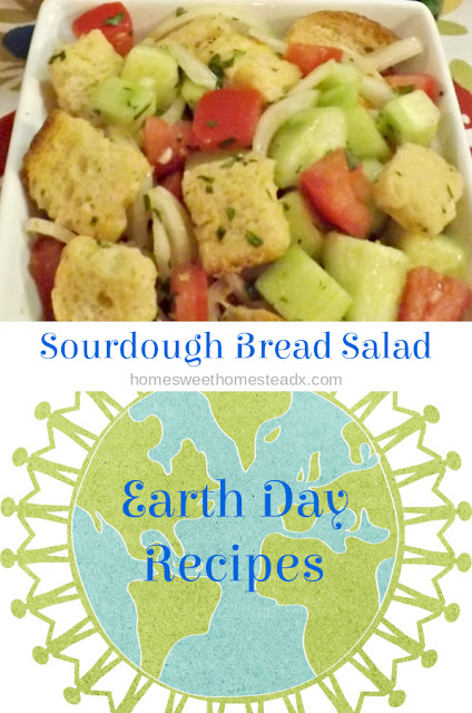 Sourdough Bread Salad - Home Sweet Homestead