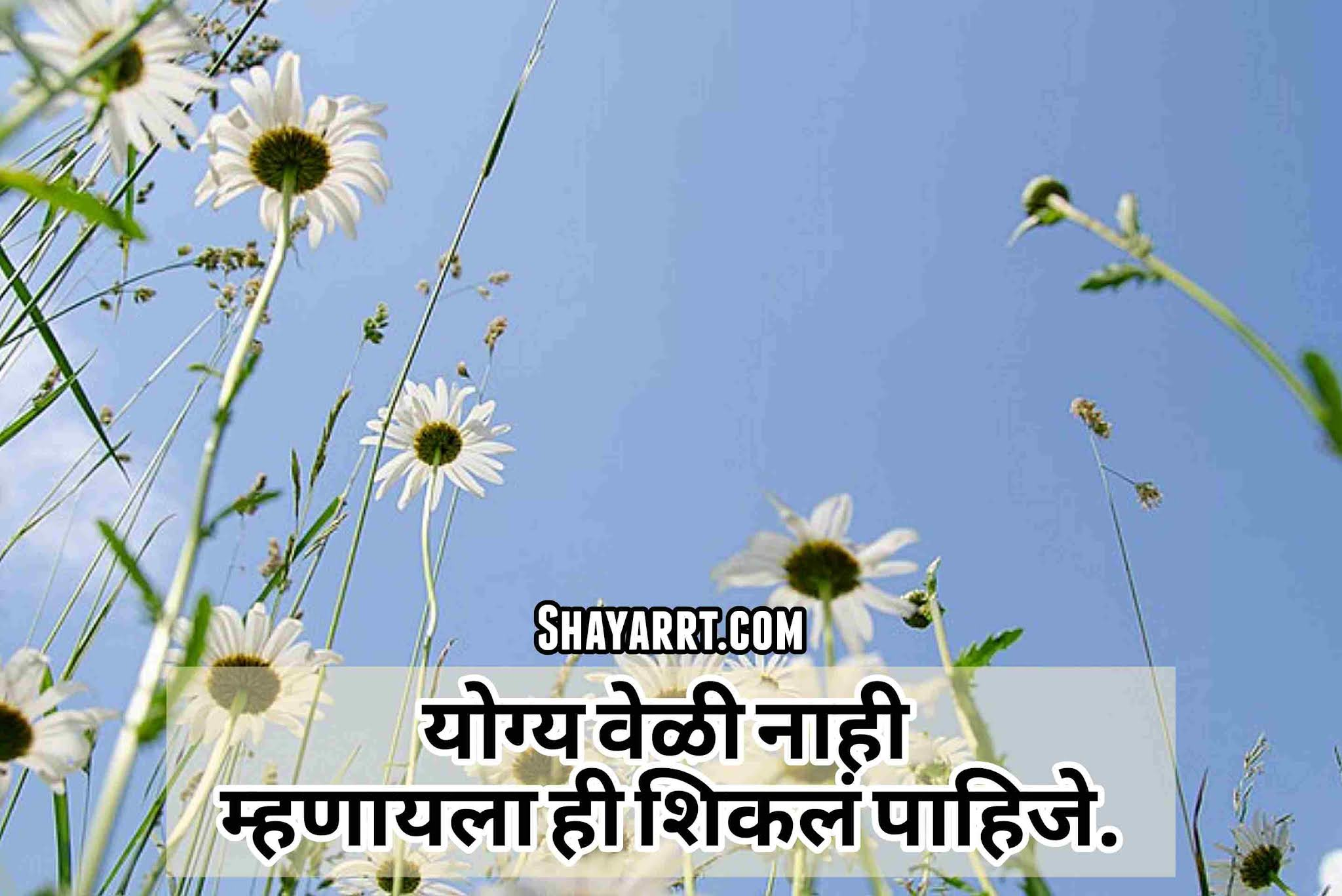famaous marathi zindagi shayari top marathi shayari on zindagi 2021