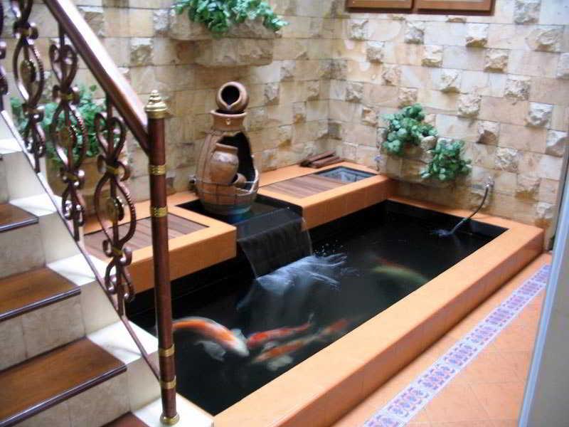 Desain Kolam Ikan Dalam Rumah