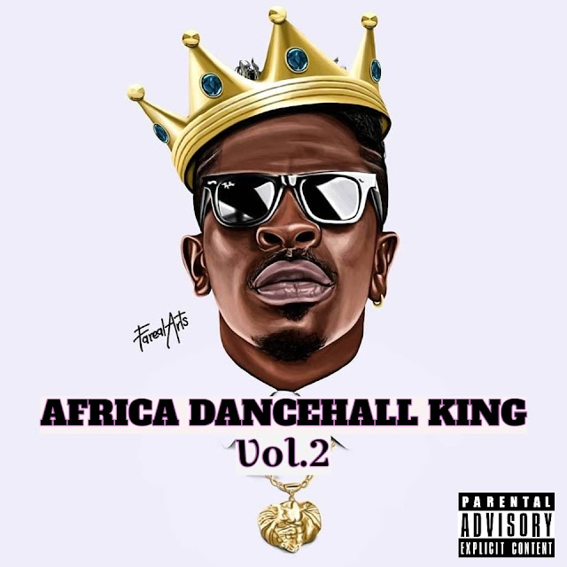 AFRICA DANCEHALL KING VOL.2 BY DJ SLIM HEAVY
