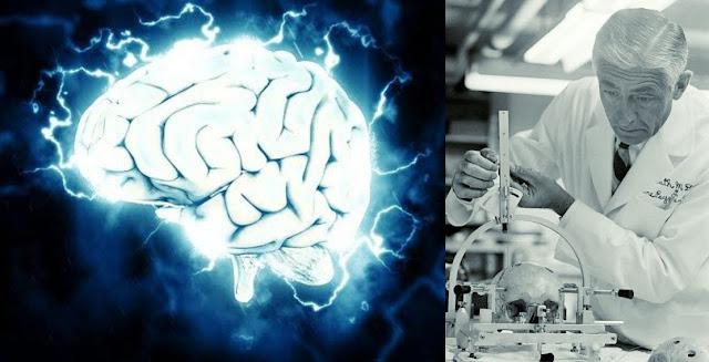 disturbing-creepiest-science-experiments-robert-heath