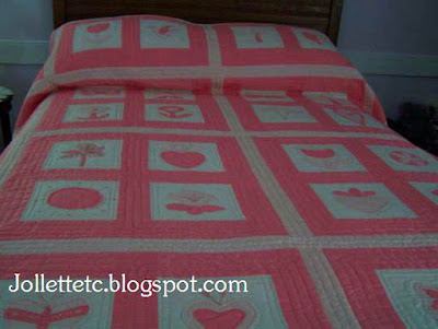 Appliqued quilt by Mary Eleanor Davis Slade https://jollettetc.blogspot.com