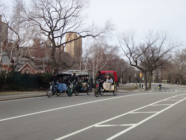Pedicab Tour no Central Park