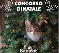 Sanicat concorso di Natale 2020 : vinci gratis scorta di lettiera per 2 mesi