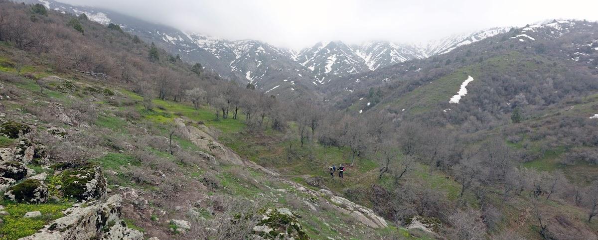 DSC02045 Panorama