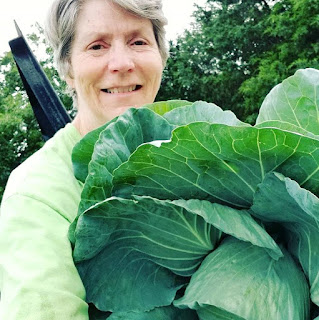 Growing cabbage - how to stay organized while ordering vegetable seeds for your garden.