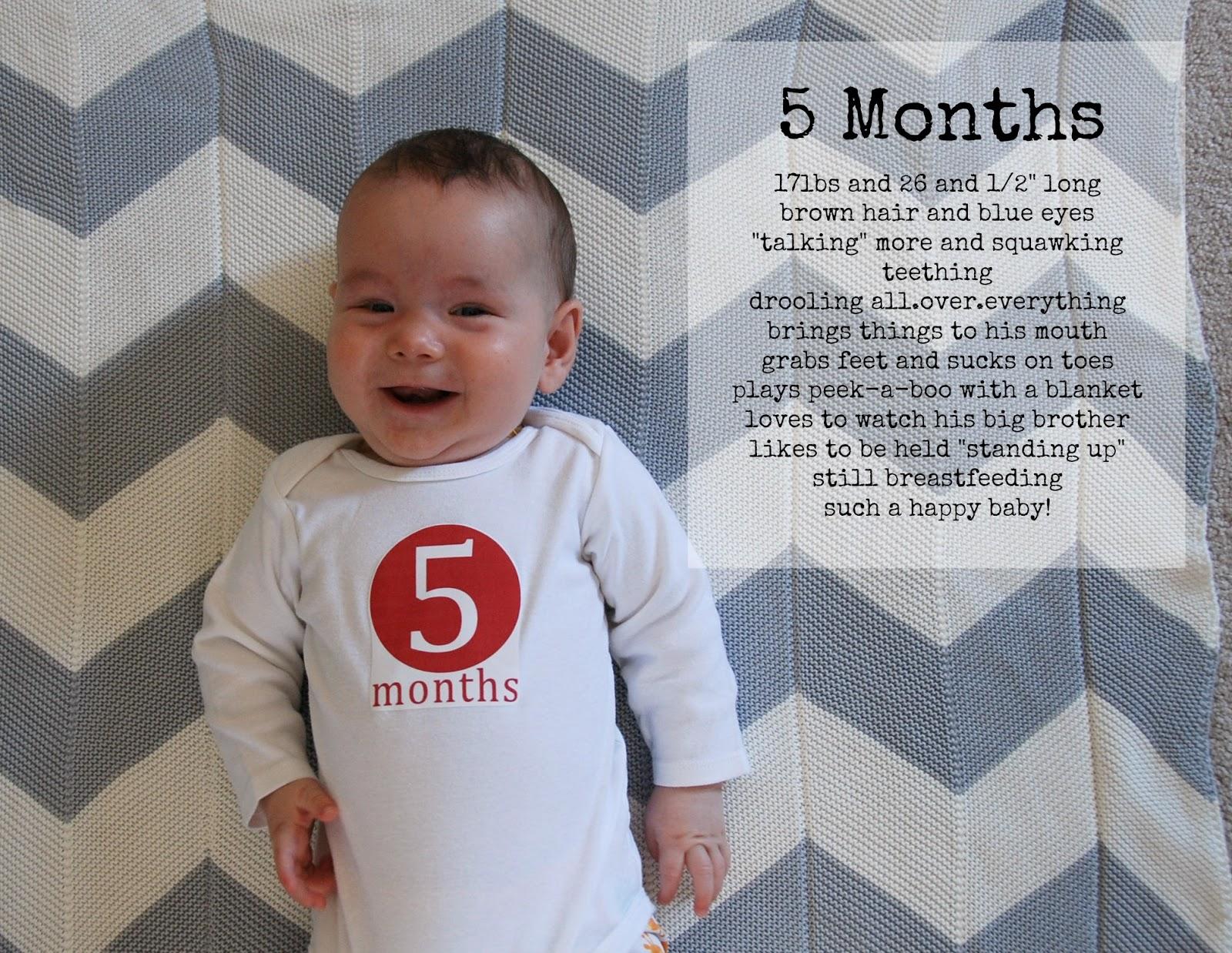 the little hedgehog: 5 Months Old!