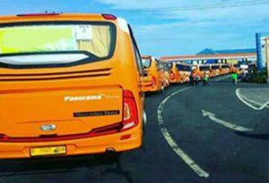 Tips Mengatur Transportasi Bagi Acara Liburan Perusahaan Kamu