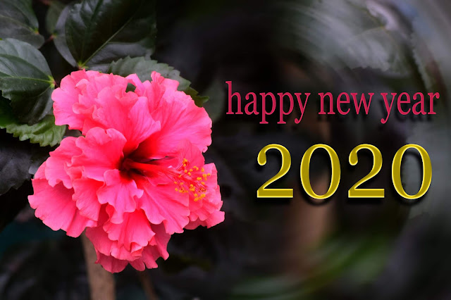 new year 2020 photo hd , new year 2020, 2020 wishes, 2020 greeting, 2020 facebook, 2020 message,