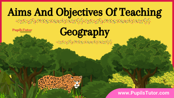 Why Should Geography Be Taught In Schools? – List And Explain Aims And Objectives Of Teaching Geography In School | 15 Key Aims Objective Of Geography