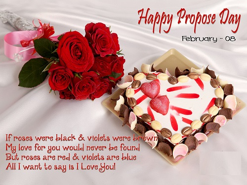 Propose day shayari for gf